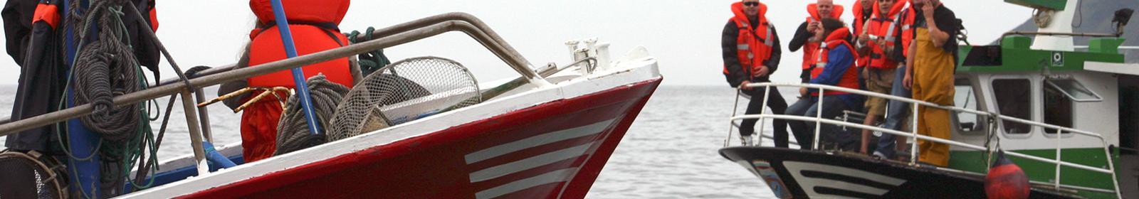 Embarques en pesqueros